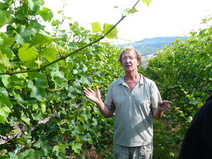 Grower Don King in vineyard.JPG